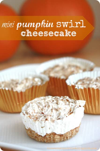 Mini Pumpkin Swirl Cheesecake | The Recipe Critic
