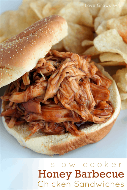 50 Summer Bbq Potluck Ideas The Recipe Critic