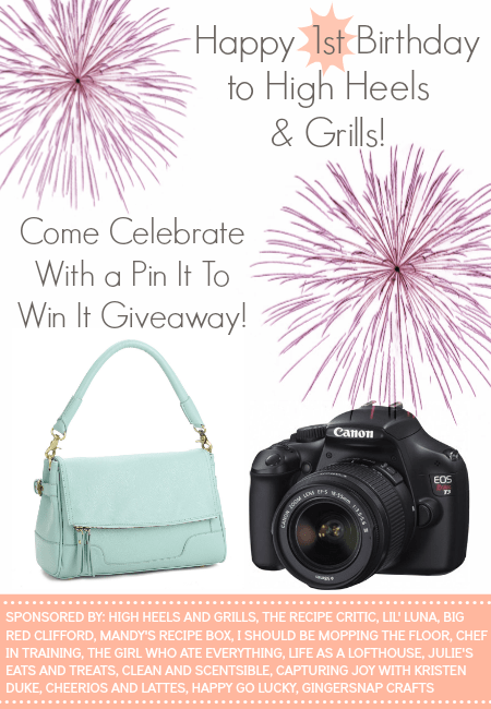 Graphic showing the purse and camera you can with with this giveaway.