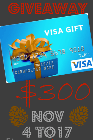 Fall into Christmas $300 Gift Card Giveaway!