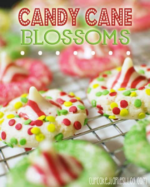 Candy Cane Blossoms - One of the Best Amazing Cookie Recipes for the Holiday Season. The Recipe Critic, Alyssa Rivers, The Amazing Cookie Exchange. Best Holiday Cookie Recipes!