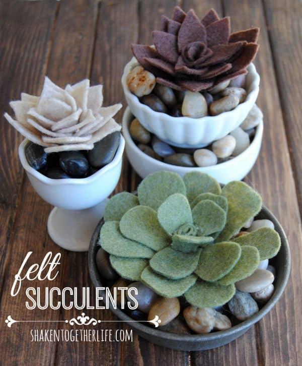 Felt Succulents