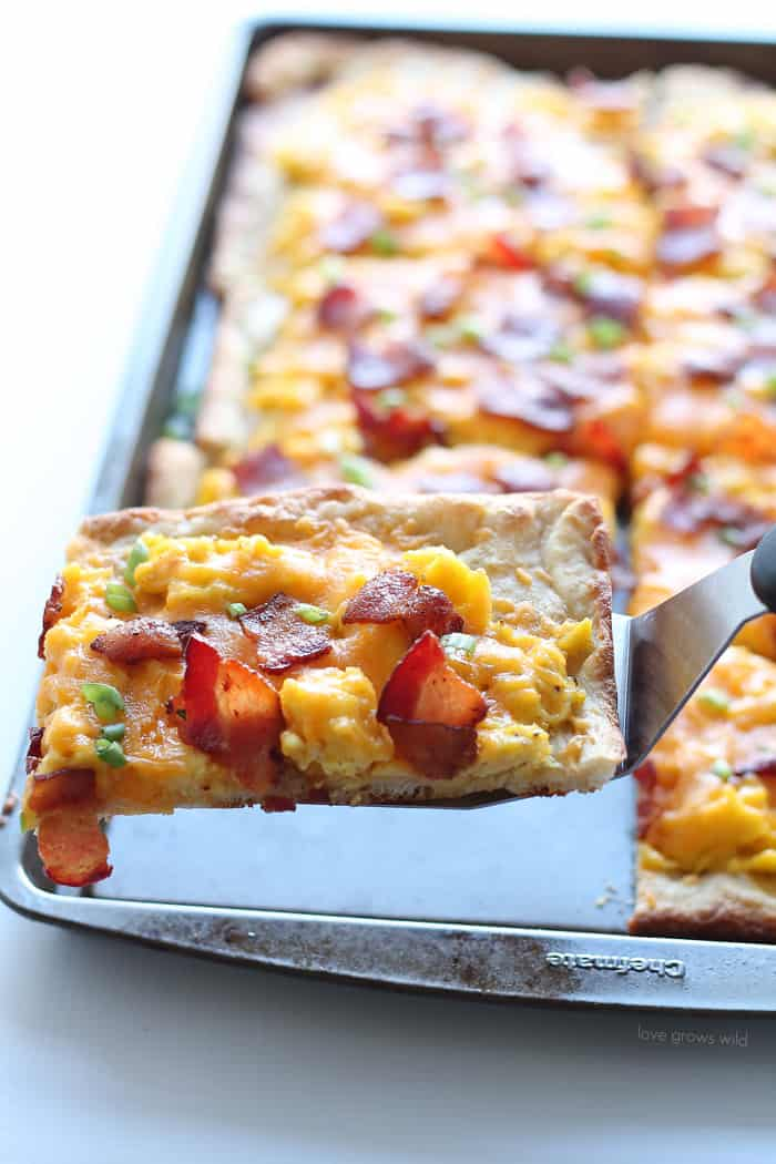 ... soft scrambled eggs, crispy bacon, and lots of melty cheddar cheese