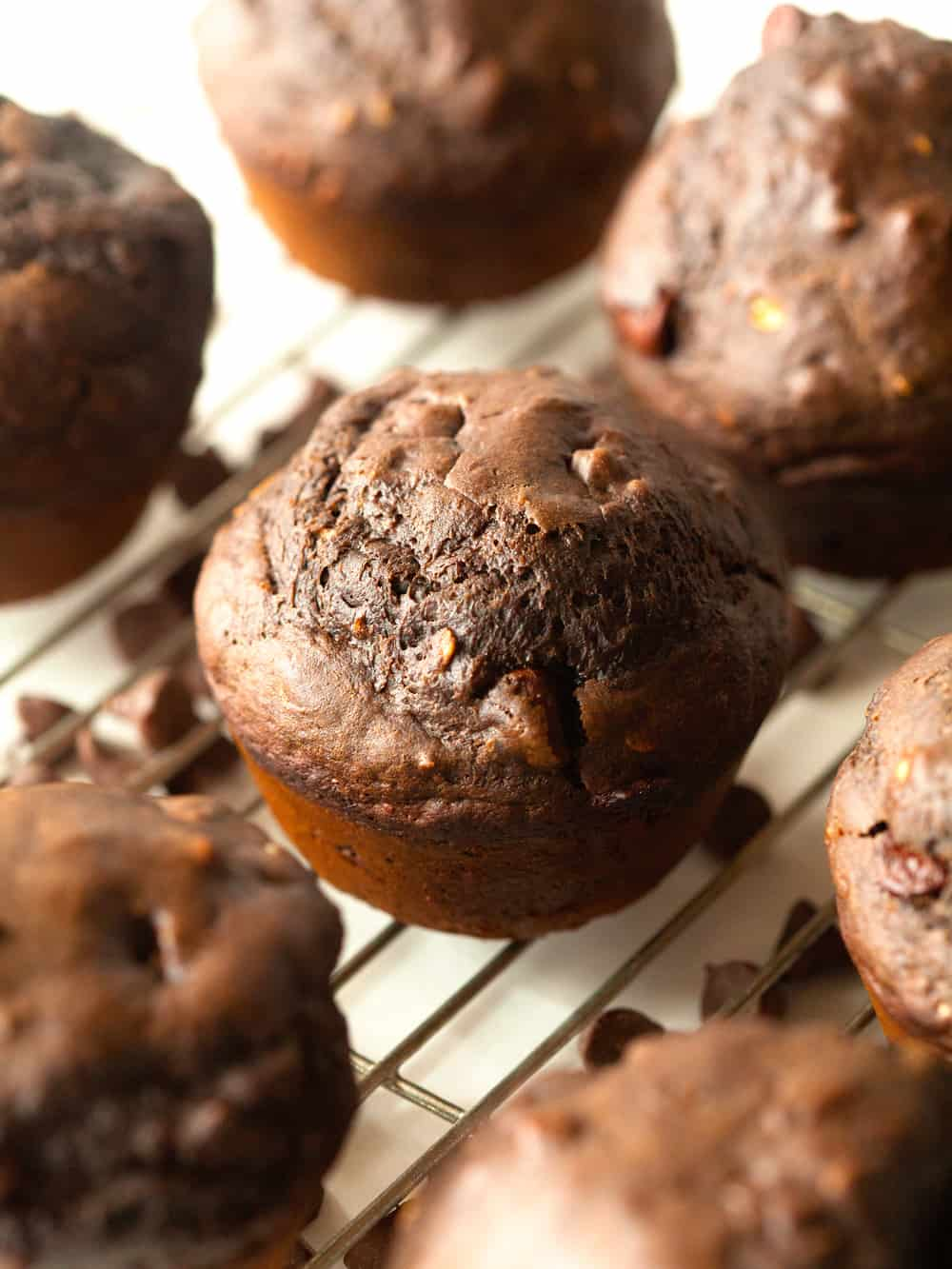 Healthier Double Chocolate Muffins   The Recipe Critic