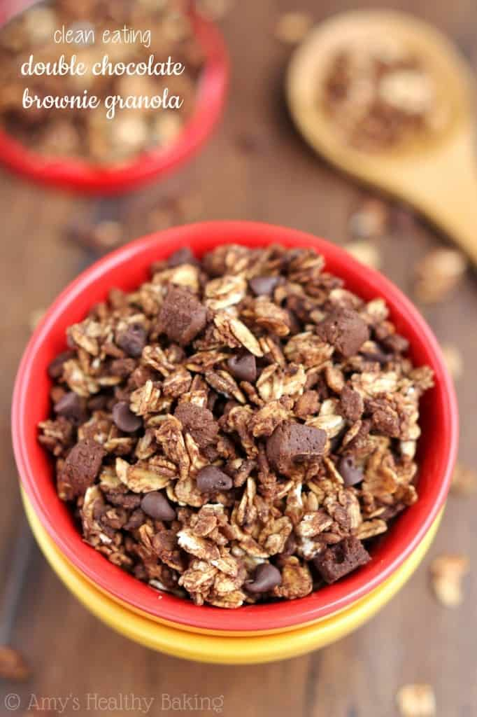 double-chocolate-brownie-granola_8131-labeled-3