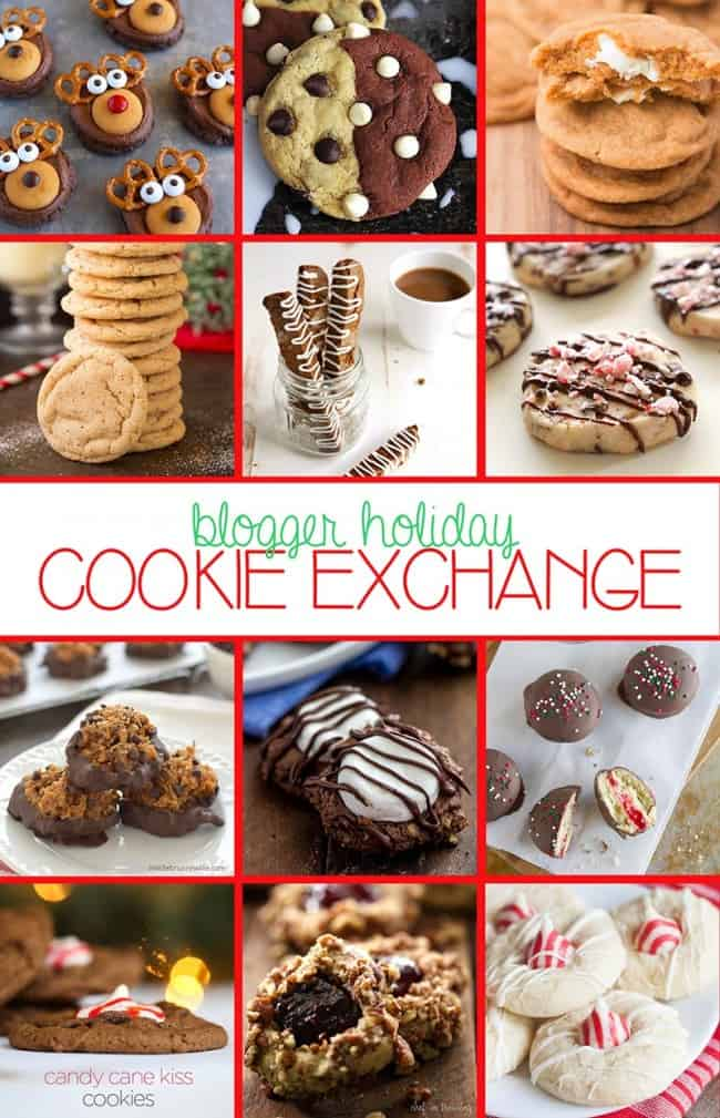 Blogger-Cookie-Exchange-Dec-2014