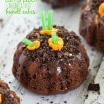 Easy-Carrot-Patch-Miniature-Bundt-Cakes-Or-Cupcakes-771x1024