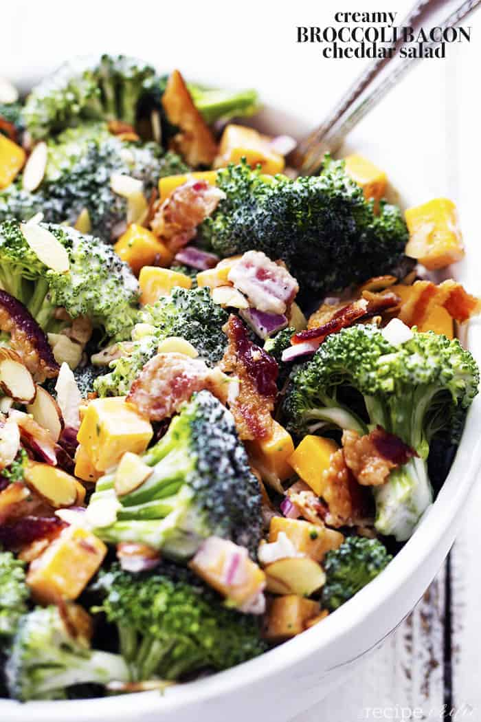 Creamy Broccoli Bacon And Cheddar Salad The Recipe Critic