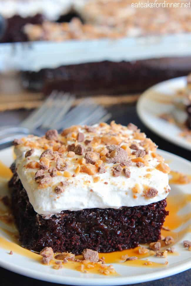 Better than Anything Zucchini Cake