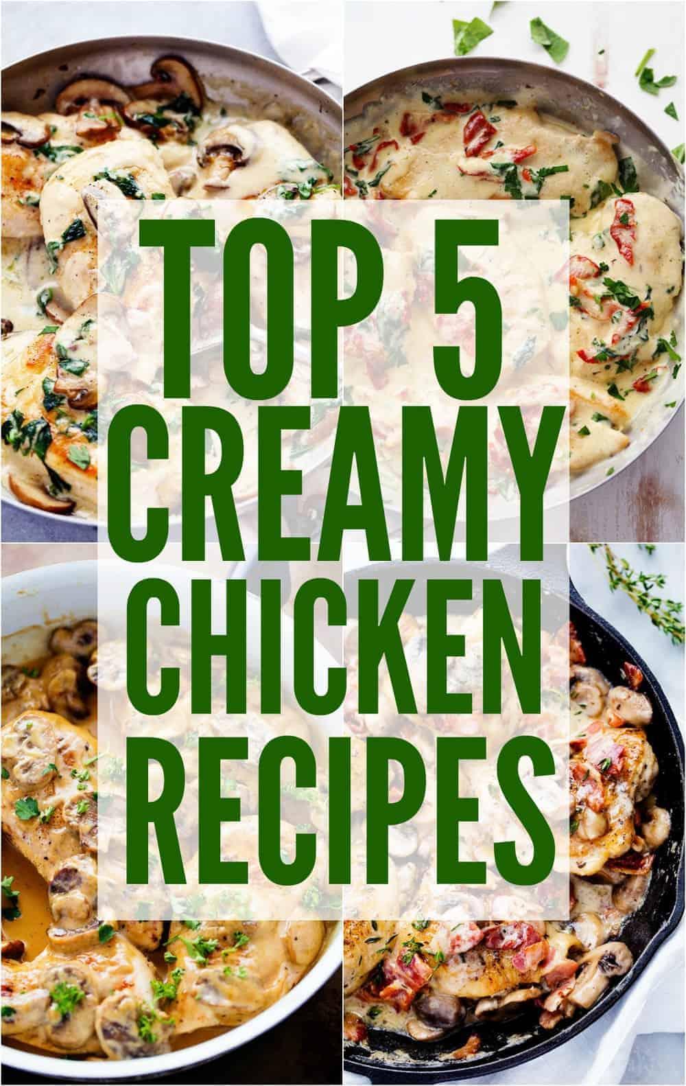 Top 5 creamy chicken recipes!
