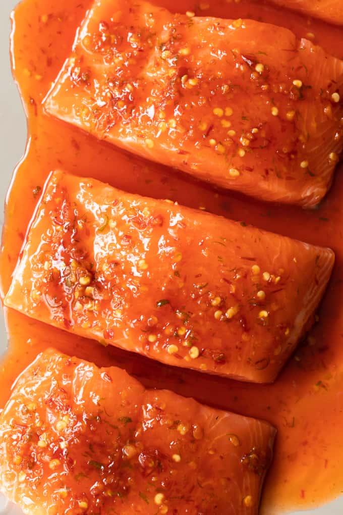 Raw salmon in marinade.
