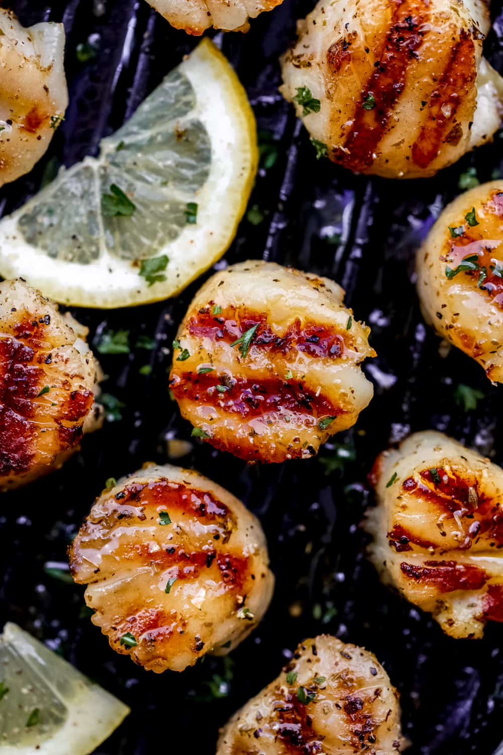 grilled lemon garlic scallops