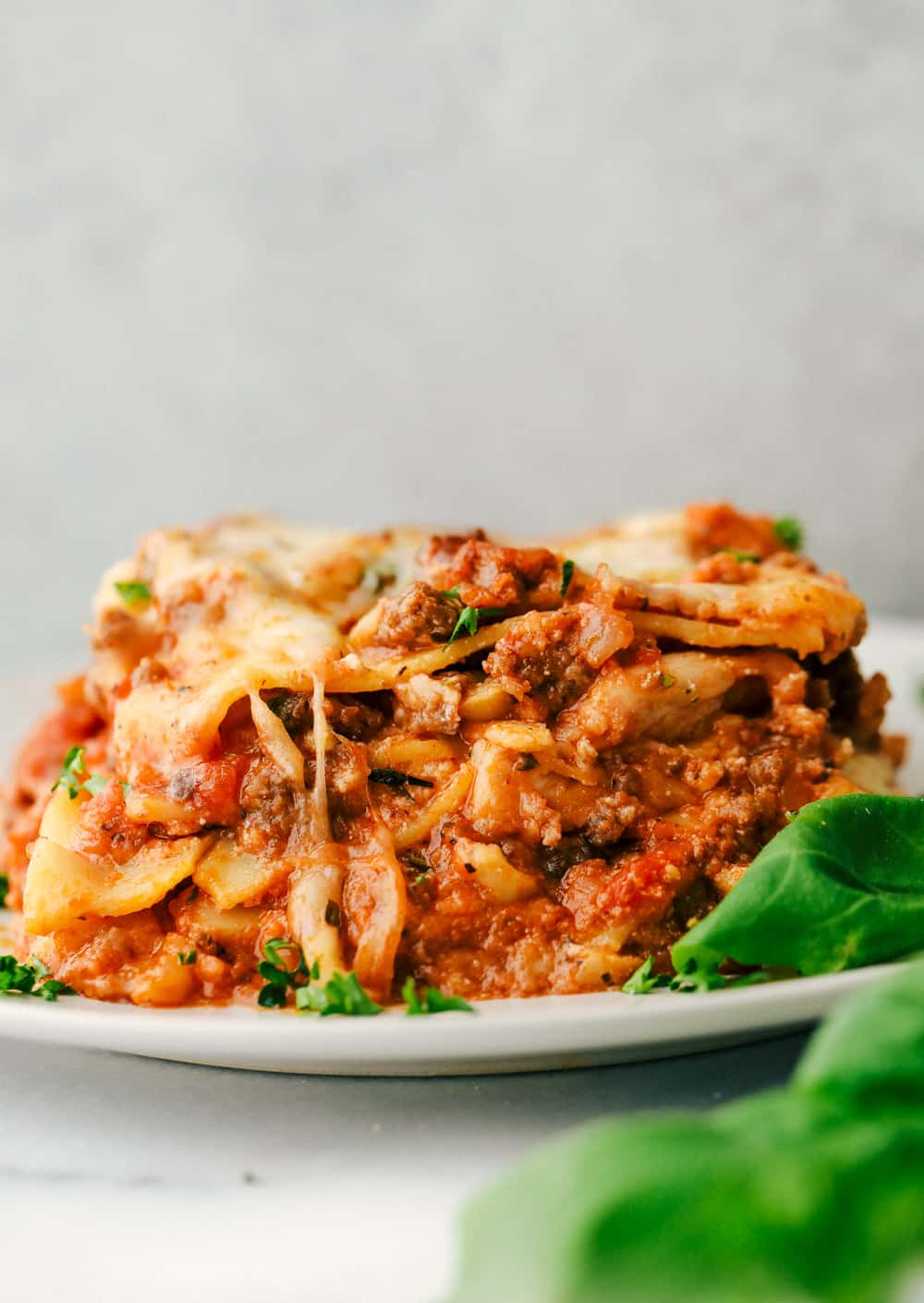 Baked lasagna on a plate