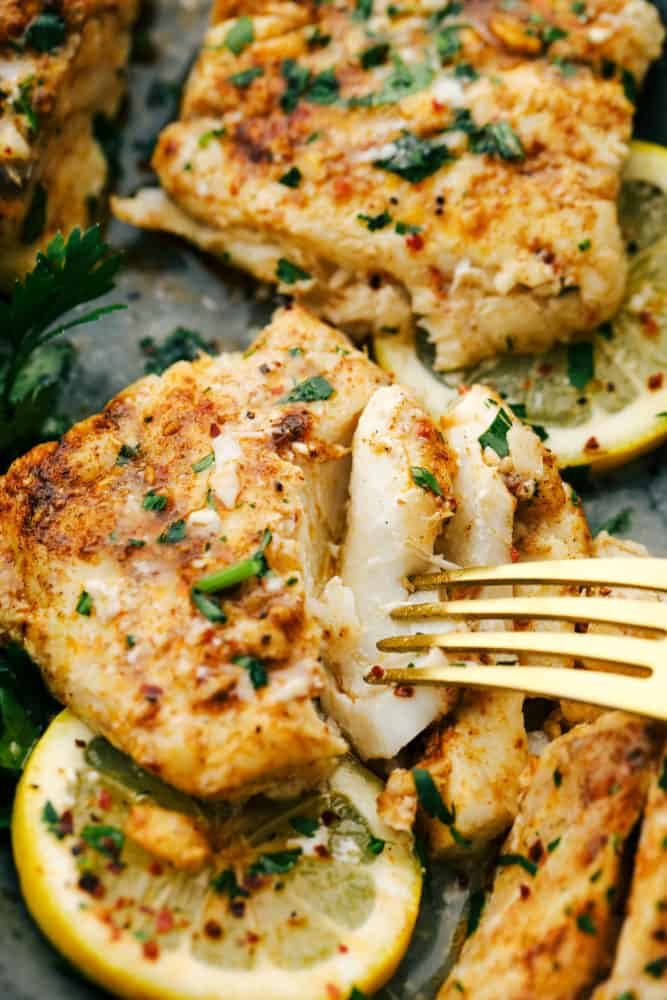 Baked cajun garlic butter cod on a plate with lemon slices underneath and a fork pulling apart the flakes of cod to show the color and tenderness.