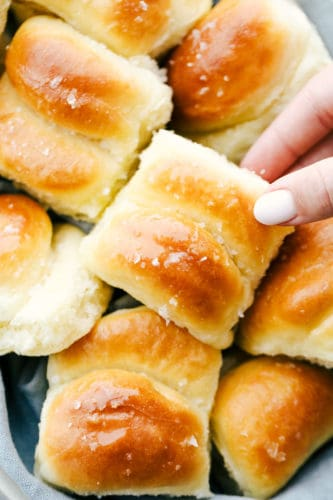 Parker House Rolls - The Recipe Critic RSS Feed  IMAGES, GIF, ANIMATED GIF, WALLPAPER, STICKER FOR WHATSAPP & FACEBOOK