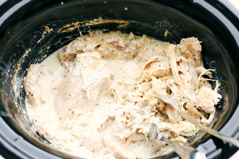 Shredding Crack Chicken in a crock pot