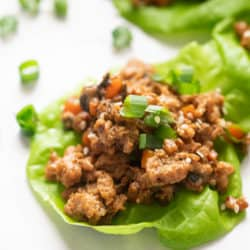 Closeup of a chicken lettuce wrap topped with spring onions