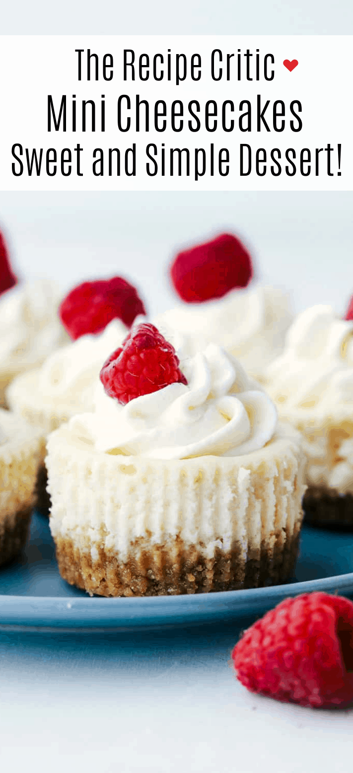 Easy Mini Cheesecakes | Cook And Hook | Cook & Hook