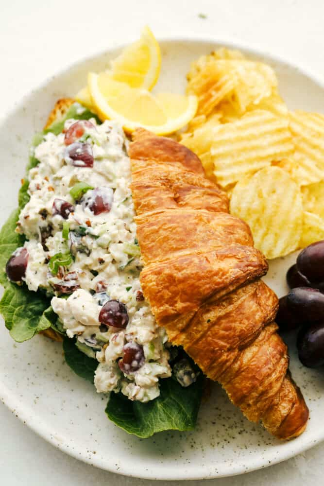 Chicken salad on a croissant with chips on a plate.